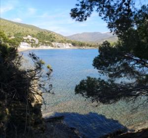 Baia Ogliastro Marina Villa Edwige Bed and Breakfast Castellabate