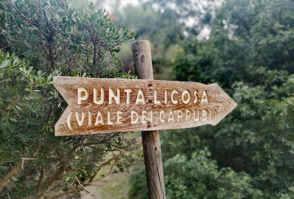 Punta Licosa Villa Edwige Bed and Breakfast Ogliastro Marina Castellabate